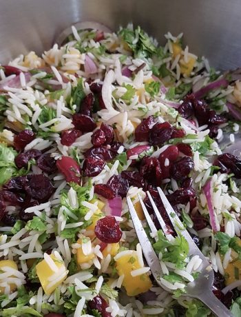 Wild Basmati Rice & Mango Salad